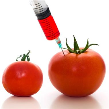 GMO Foods Health Risks, Are You Aware of the Hidden Dangers?